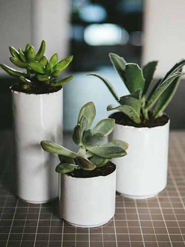 ghk-unique-diy-planters-soda-can-planters-lgn