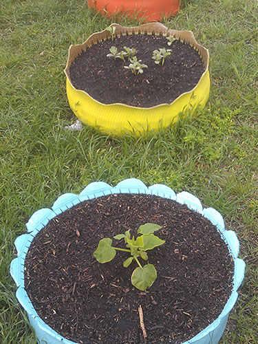 ghk-unique-diy-planters-Tire-planters-lgn