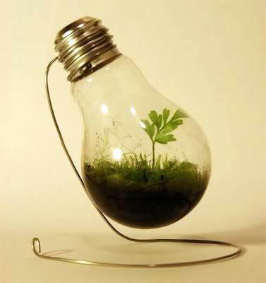 lightbulb-greenhouse-05