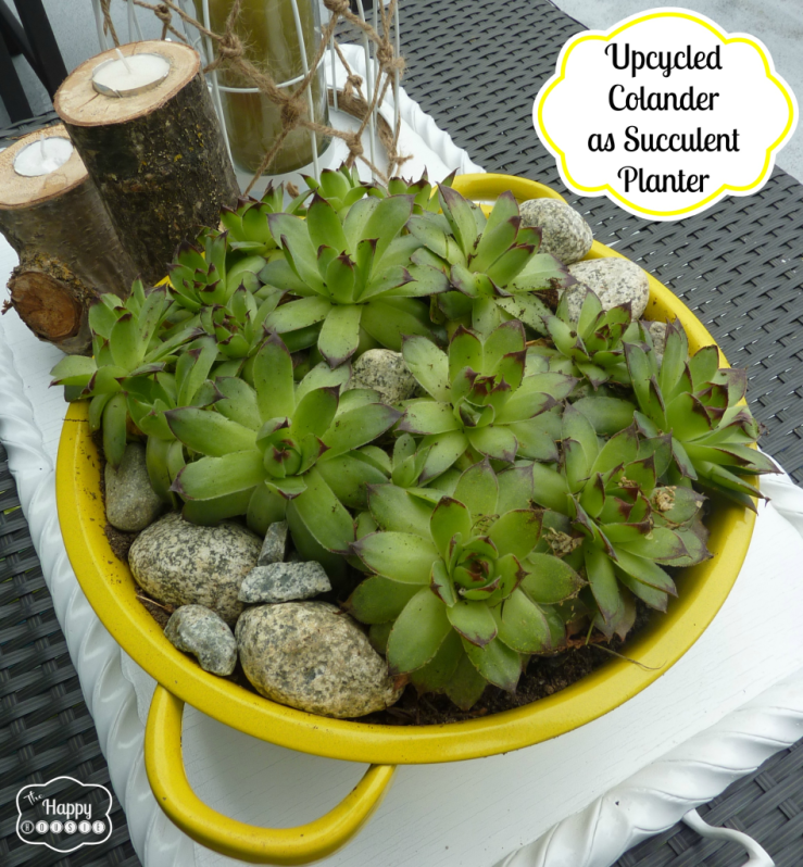 upcycled-colander-as-succulent-planter-at-thehappyhousie-948x1024